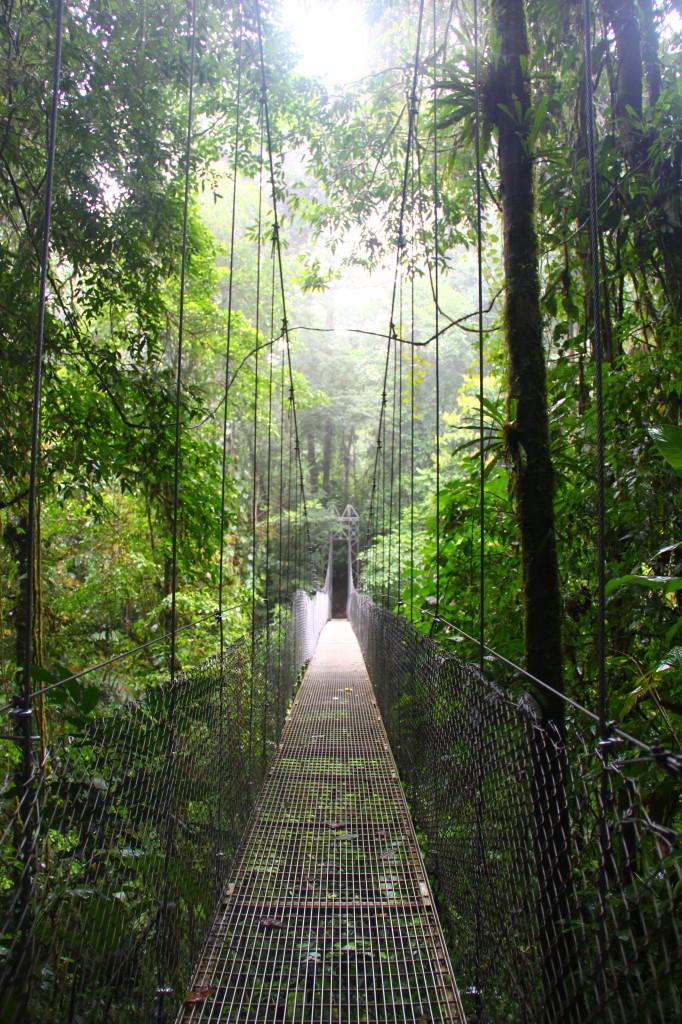 pura vida: the hanging bridges of arenal