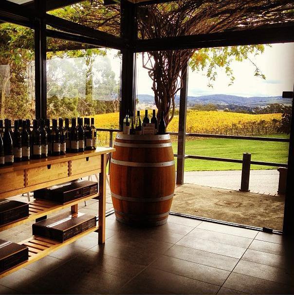 Adelaide wine region