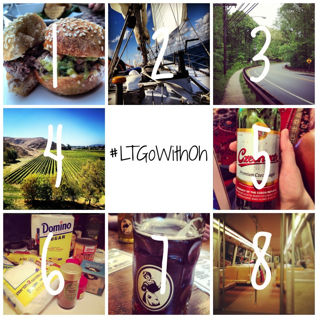 the official #LTGowithOh bucket list