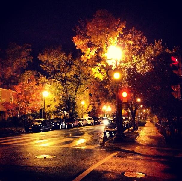 dc in autumn