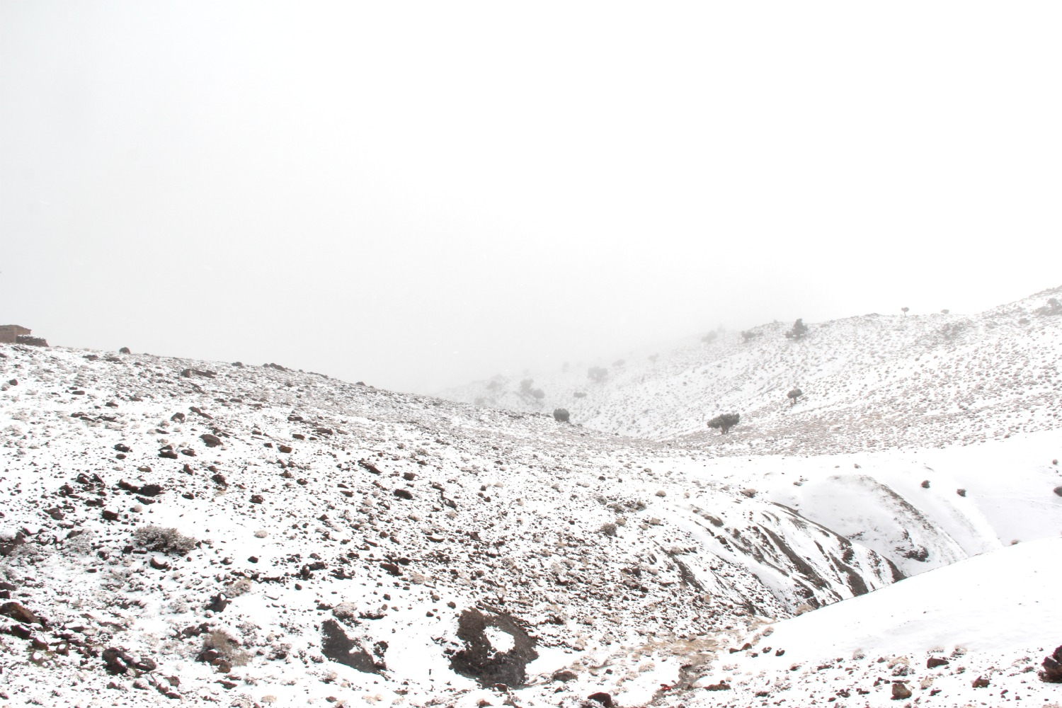 Atlas Mountains - Whiteout