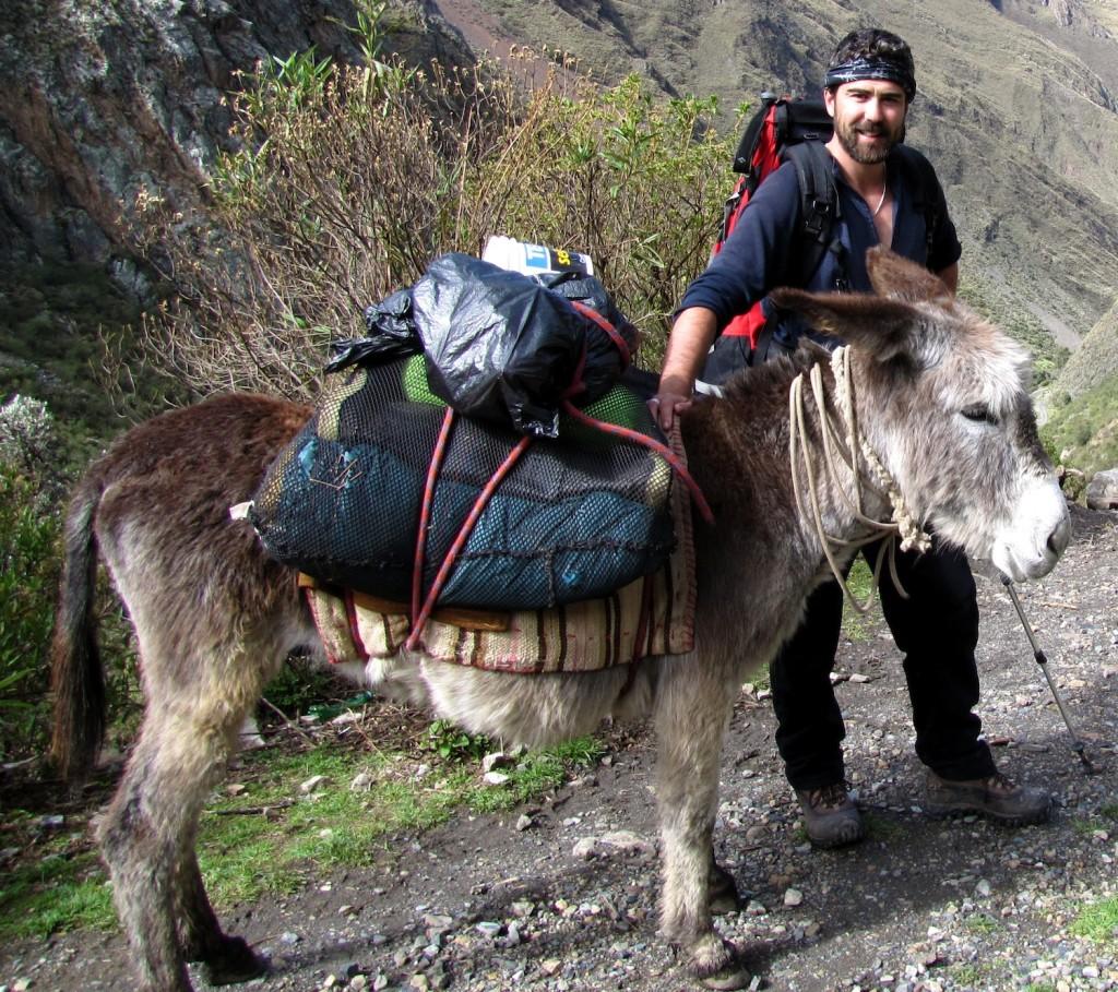 Ben West - Donkey