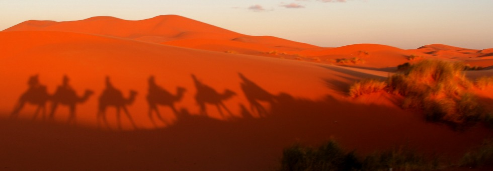 morocco | from the mountains to the dunes