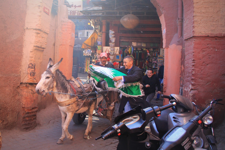 Raja Casablanca Donkey