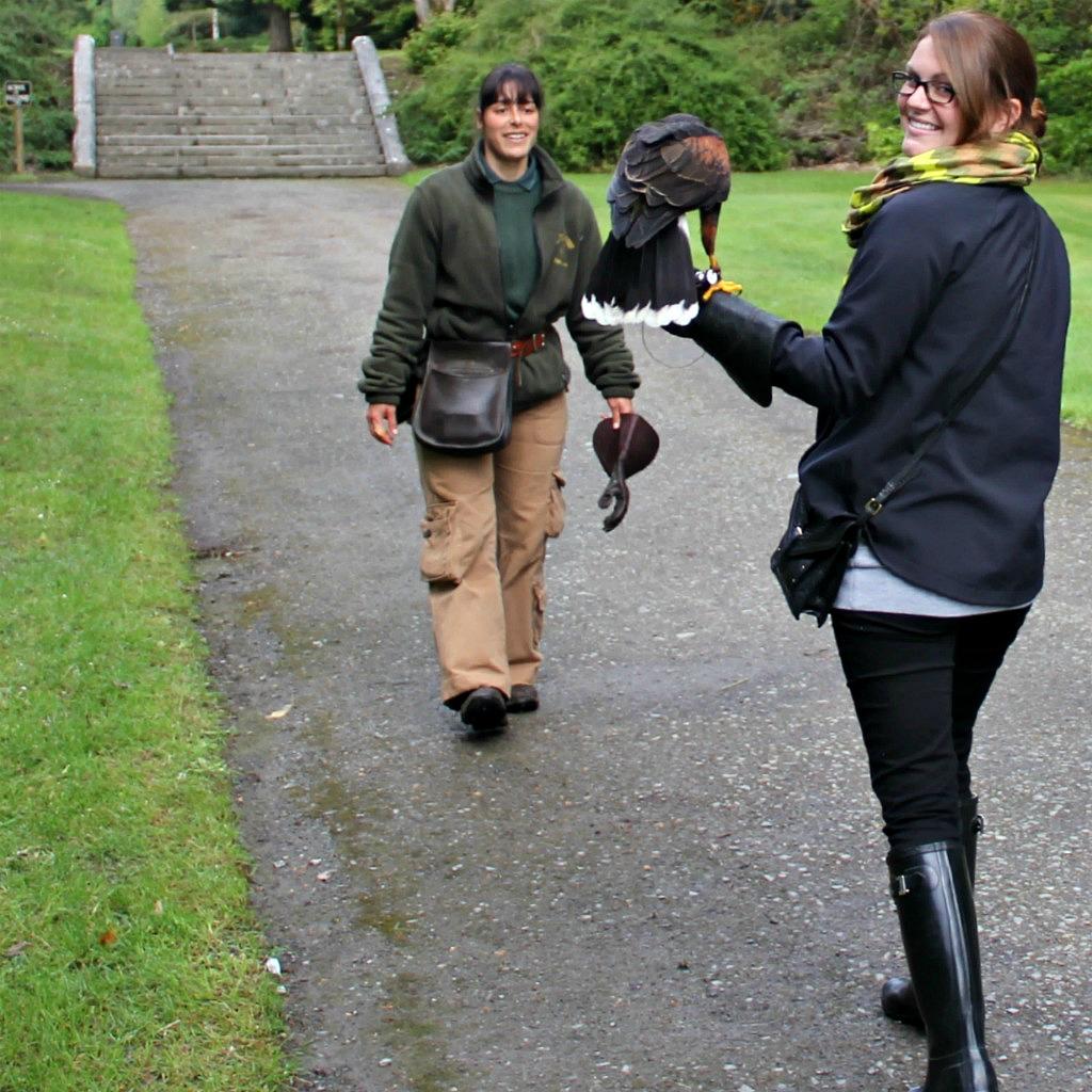ashley - hawk walk