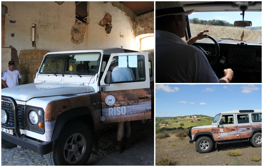 Riso Jeep Tour