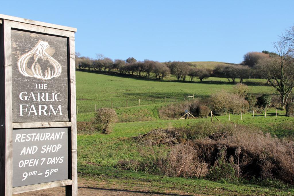Isle of Wight - The Garlic Farm
