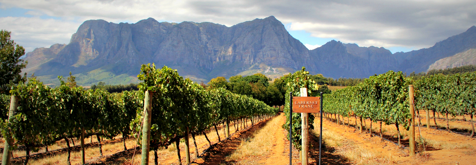 the lazy girls' guide to exploring south africa's western cape: part 1